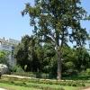 Градина - Гърция