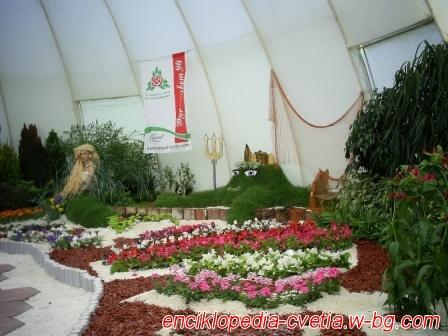 Флора Бургас 2010
