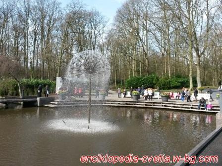 Цветята на Keukenhof - Холандия